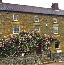 Roses Manor Shiningford web
